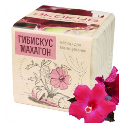 """Экокуб """"Гибискус"""" (сувенирный семенной материал)"""