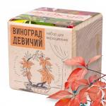 """Экокуб """"Виноград"""" (сувенирный семенной материал)"""