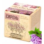 """Экокуб """"Сирень"""" (сувенирный семенной материал)"""