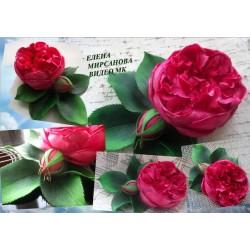 Видео мастер класс Пионовидная роза из фоамирана